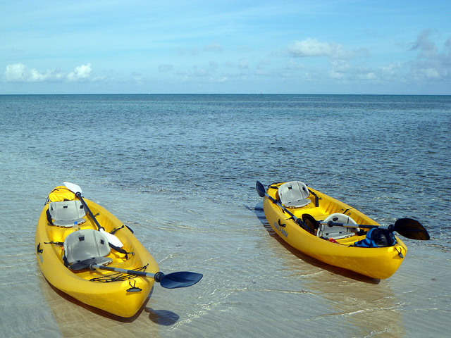 Two Kayaks with Paddles