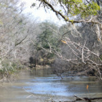 View of the Chipola River at Hinson Recreation Area along the Chipola River Greenway