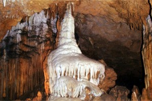 Formations found inside the Florida Caverns